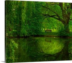 Summer World from Great Big Canvas.com