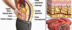 O chá seca-barriga: 3 ingredientes para você afinar a cintura e ainda limpar as artérias! - http://comosefaz.eu/o-cha-seca-barriga-3-ingredientes-para-voce-afinar-a-cintura-e-ainda-limpar-as-arterias/