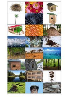 2. část Kde bydlí zvířátka Homeschool, Crochet Hats, Texture, Wood, Crafts, Petra, Cousins, Knitting Hats, Surface Finish