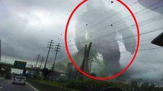 5 Gigantic Mysterious Creatures Caught On Camera