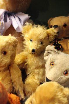 Teddy Bears in Suomenlinna Toy Museum Helsinki
