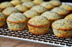 Mini Lemon Poppyseed Muffins (we could convert this to be very healthy with whole grain flour and alternative sweetener and more nuts). Sugar Free Recipes, Easy Cake Recipes, Muffin Recipes, Cupcake Recipes, Bread Recipes, Breakfast Dishes, Breakfast Recipes, Breakfast Time, Sugar Free Muffins