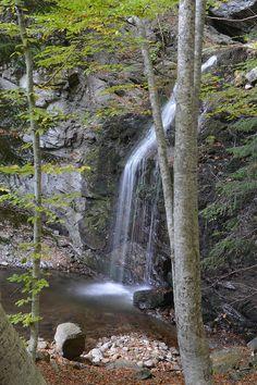 Frakto forest waterfall by Nick Tsemente http://www.flickr.com/photos/tsenteme/10328961315/in/pool-2355224@N25/