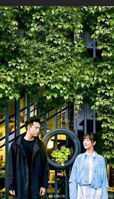 亲爱的热爱的cá mực hầm mật Taiwan, Chines Drama, Chinese Movies, Japanese Drama, Ulzzang Couple, Cute Actors, Love Movie, Drama Movies, Film Movie