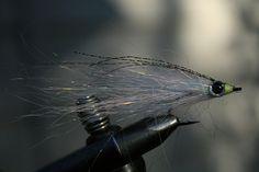 angel hair baitfish