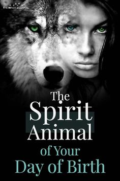 What's Your Spirit Animal Based on Your Day of Birth? What blessings are given to each individual who is born under the influence of each day Spirit Animal Quiz, Whats Your Spirit Animal, Animal Spirit Guides, Animal Meanings, Animal Symbolism, Eye Meaning, Spiritual Animal, Pet Day, Animal Totems