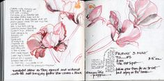Tulips Drawing inks, stick, soft pencil & brush