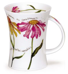 Cottage Garden Echinacea