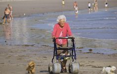 A local photographer spots the former first lady out for a walk with her dogs on a sunny late-summer afternoon. Barbara Pierce Bush, Barbara Bush, Laura Bush, Past Presidents, American Presidents, American Pride, American History, First Lady Portraits, First Lady Of America