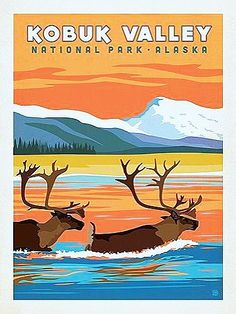 Kobuk Valley National Park - Anderson Design Group has created an award-winning series of classic travel posters that celebrates the history and charm of America's greatest cities and national parks. Founder Joel Anderson directs a team of talented Nashvi American National Parks, Us National Parks, Alaska, Voyage Usa, National Park Posters, Retro, Travel Illustration, Art Graphique, Vintage Travel Posters
