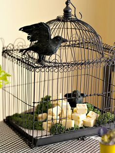 Creepy Container:  Dare guests to retrieve their snacks from a raven-guarded cage. Spray-paint an ornate wire cage with matte-finish black paint, then line the bottom with parchment paper to rest chunks of cheese among parsley greens. Don't forget a couple of creepy feathered enemies (artificial of course. lol)