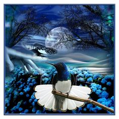 Blue Night by reluna on Polyvore featuring art