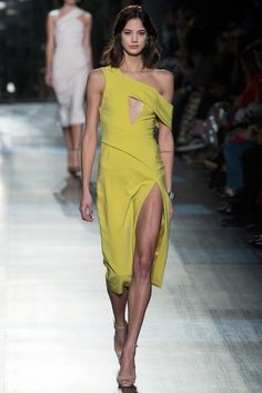 See the complete Cushnie et Ochs Fall 2017 Ready-to-Wear collection  this designer decided to skip the prints trend this season it seems