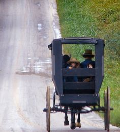 by Cindy Seigle    I remember seeing Amish families in buggies go by my Grandparents farm. They always waved to me.