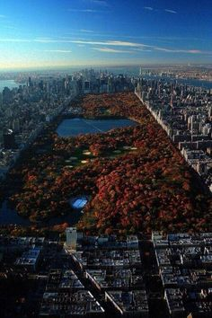 Central park in autumn New York city