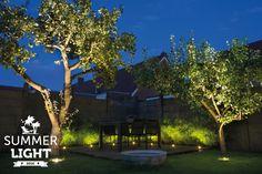 In de reeks SUMMER LIGHTS deze sfeervolle tuin met daarin grondspot DB LED om de bamboe uit te lichten en grondspot NERO om de appelbomen uit te lichten.