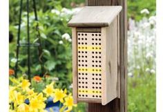 Do you want to be a beekeeper and looking for ideas or plans for langstroth, top-bar, or warre beehives? Here are 36 fee DIY beehive plans for you. Bee Hive Plans, Beekeeping For Beginners, Raising Bees, Raising Chickens, Outdoor Projects, Outdoor Decor, Wood Projects, Bee Supplies, Mason Bees