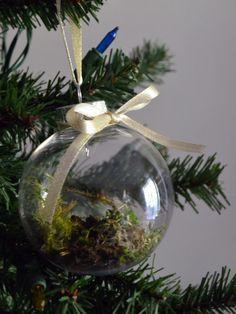 A Living Tree: Easy DIY Terrarium Ornaments! --> http://www.hgtvgardens.com/terrarium/how-to-make-terrarium-ornaments?soc=pinterest