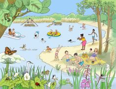 leefwereld-knieboek-de-zomerplas.jpg 800×617 pixels