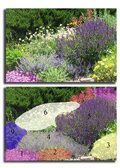 Black Forest Landscape Design Studio: All Summer Blooms (Pre-planned Garden) #LandscapeDesignPlans