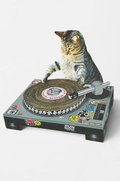 Cat Scratch DJ Deck #urbanoutfitters