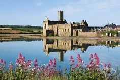 Timoleague Abbey in West Cork reflects perfectly in the calm waters of the Argideen river estuary on a beautiful summer morning. Timoleague abbey was founded in 1240 A.D by the Franciscan order and was built on the site of a monastic settlement founded by Saint Molaga in the 6th century.
