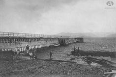 Rollizos, Muelle de Bariloche, Año 1920 (Col Garza en Archivo Visual Patagónico)