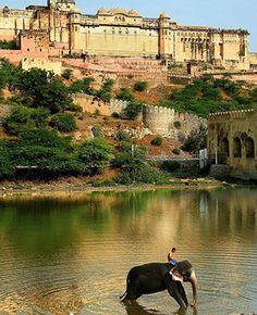 Amber Fort, Jaipur, Rajastán