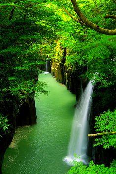 ...green world...