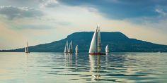 Megkezdődött a vitorlás szezon a Balatonnál | Mandiner Sailing Ships, San Francisco Skyline, Opera House, Boat, Building, Travel, Dinghy, Viajes, Buildings