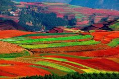 China is becoming more synonymous with pollution than natural beauty, but this area of the country is an exception. See the stunning Red Lands of China. Wildlife Photography, Travel Photography, Photography Tips, Photography Courses, China, Kangen Water, Kunming, Take Better Photos, Nature Pictures