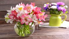 Get advice on how to choose and care for the best plants depending on the climate, season, and space — whether you have a small patio or several acres. Plus, steal ideas to create a gorgeous landscape that complements your lush garden. My Flower, Flower Vases, Flower Arrangements, Cut Flowers, Spring Flowers, Flowers Last Longer, Growing Plants Indoors, Diy Bouquet, Bouquets