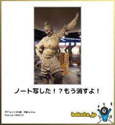 Japan, Humor, Memes, Funny, Fictional Characters, Okinawa Japan, Cheer, Meme, Jokes