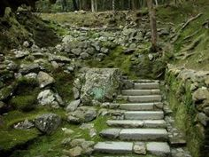 Kokedera, also known as Saihoji, also known as the Moss Temple, is one of the most spectacular places in Kyoto, Japan. by MyohoDane Japanese Garden Zen, Japanese Gardens, Moss Temple, Life Philosophy, Outdoor Living, Outdoor Decor, Walking In Nature, Garden Bridge, Stepping Stones