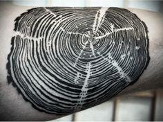tree rings Distintos grosores
