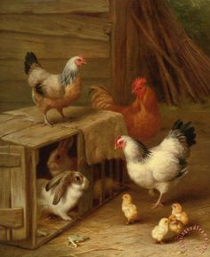 Cockerel Hens Chicks And Rabbit Painting by Edgar Hunt