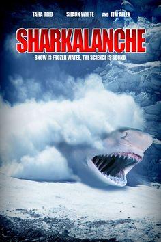 K.Bell Sharknado 3 Swarming Great White Sharks Ladies Knee High Socks Black New