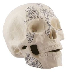 White skull with tattoos