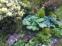 Spring in Puget Sound | Fine Gardening