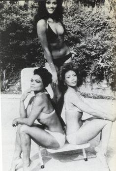 Vintage photo of Jayne Kennedy, Freda Payne and Eartha Kitt (Cover of Jet Magazine) in the 1970s. # BLACK IS BEAUTIFUL Shirley Jones, Veronica Lake, Vintage Black Glamour, Vintage Beauty, Vintage Soul, Vintage Vibes, Retro Vintage, Freda Payne, Divas