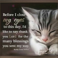 Before I close my eyes to this day, I'd like to say thank you Lord for the many blessings you sent my way.