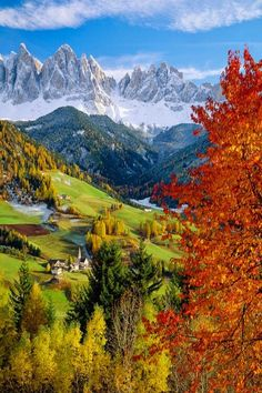Val di Funes, Dolomites, Italy  | Travel Italy | Italy Highlights | Italy Hiking Trails | Top Things To Do Italy | Top Towns In Italy | Top Sights Italy | Best Of Italy | Italy On A Budget | Italy National Parks | Italy Budget Travel | Backpacking Italy | Italy Best Beaches | Italy Travel Guide | What To Do In Italy | Dolomites