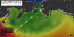 Arctic News: Record High Methane Levels