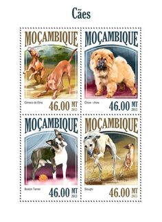 MOZ 13507 a Dogs, (Cirneco do Etna, Chow-chow, Boston Terrier, Sloughi). Chow Chow, Boston Terrier, Stamp Collecting, Postage Stamps, Mint, Licence Plates, Dog, Animals, Flags