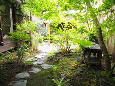 ゲストハウス錺屋 京都 庭