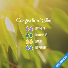 Congestion Relief - Essential Oil Diffuser Blend #EssentialOils