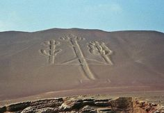 Seen only from the air, these large motifs etched into the landscape by ancient people still remain a mystery.