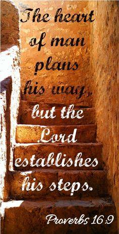 Proverbs 16-9