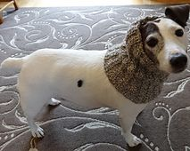 Ravelry: Snood or Neck Warmer for dogs pattern by Jacqueline Gibb free pattern, you may like for you too. http://www.ravelry.com/patterns/library/snood-or-neck-warmer-for-dogs