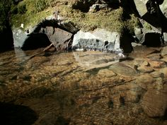 Rivers are handsome, got this under a bridge on a hike. <3 #photography #skills #MAA #photo